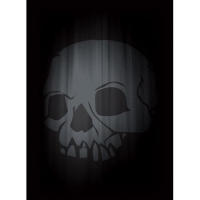 Протекторы Legion Super Iconic Skull double matte (50 шт)